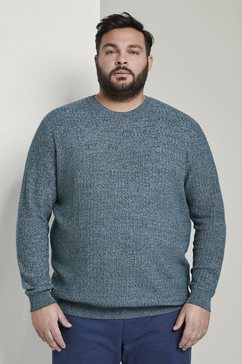 tom tailor men plus trui met v-hals »strukturierter strickpullover« groen