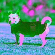 weatherbeeta »comfitec thermocell« lange hondenjas blauw