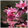 artland print op glas perzikbloesem met hommel (1 stuk) roze