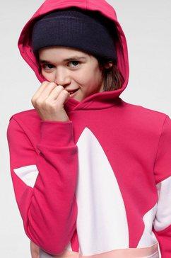 adidas originals hoodie »big trefoil hoodie« multicolor