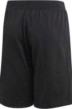 adidas performance functionele short »jouth boy training shorts« zwart