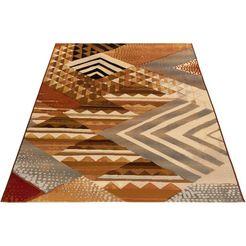 gino falcone vloerkleed »outdoor-africa 35« bruin