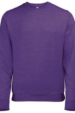 awdis trui met ronde hals »herren sweatshirt - pullover mit rundhalsausschnitt« paars