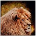 artland print op glas leeuw (1 stuk) goud