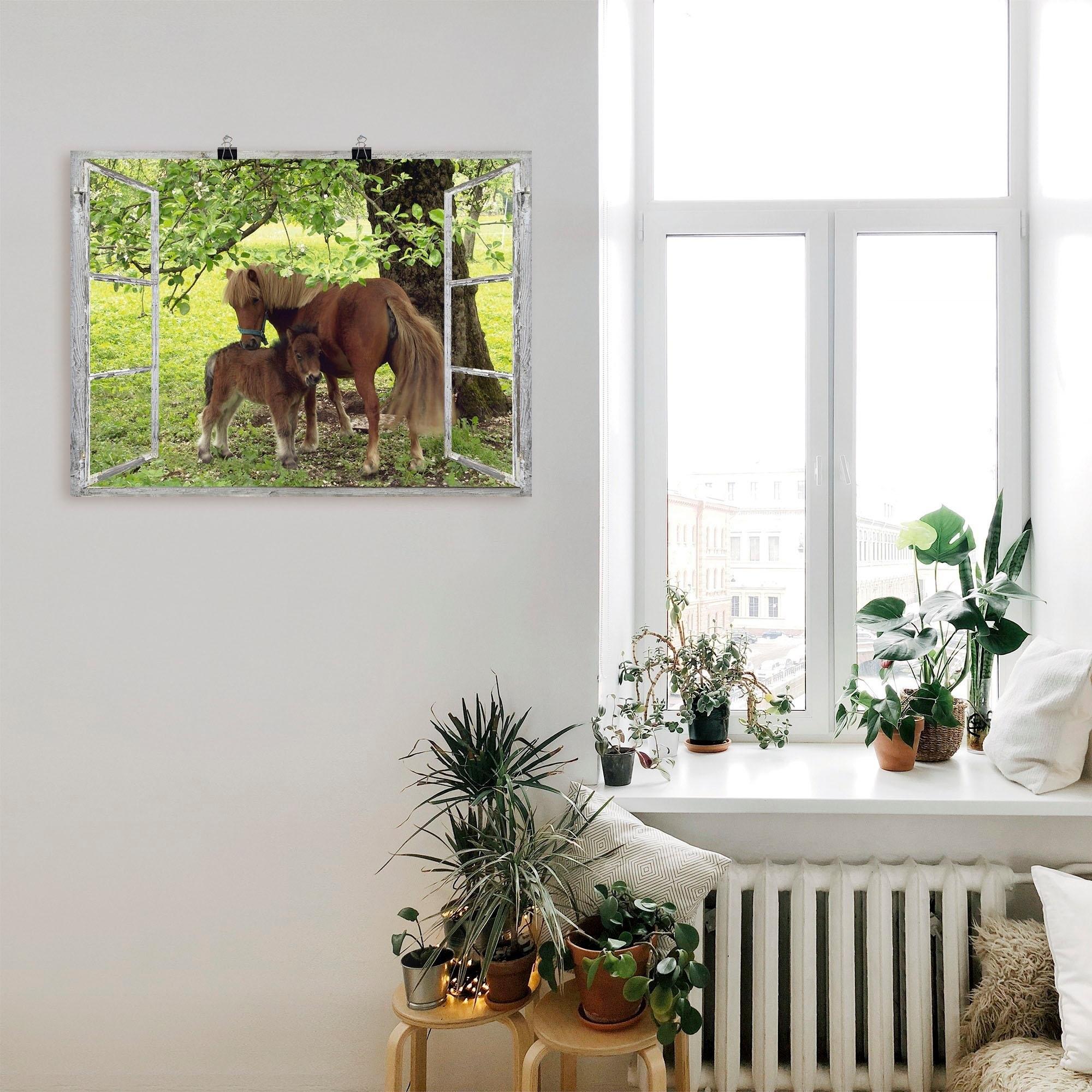 Artland artprint »Fensterblick - Pony mit Kind« - verschillende betaalmethodes