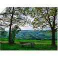 artland artprint »ausblick in den fruehling« grün