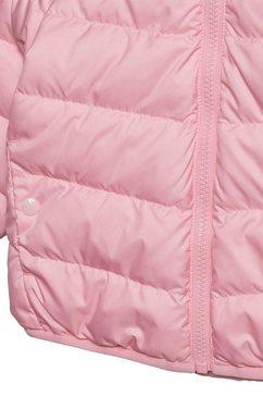 adidas originals donsjack »jacket« roze
