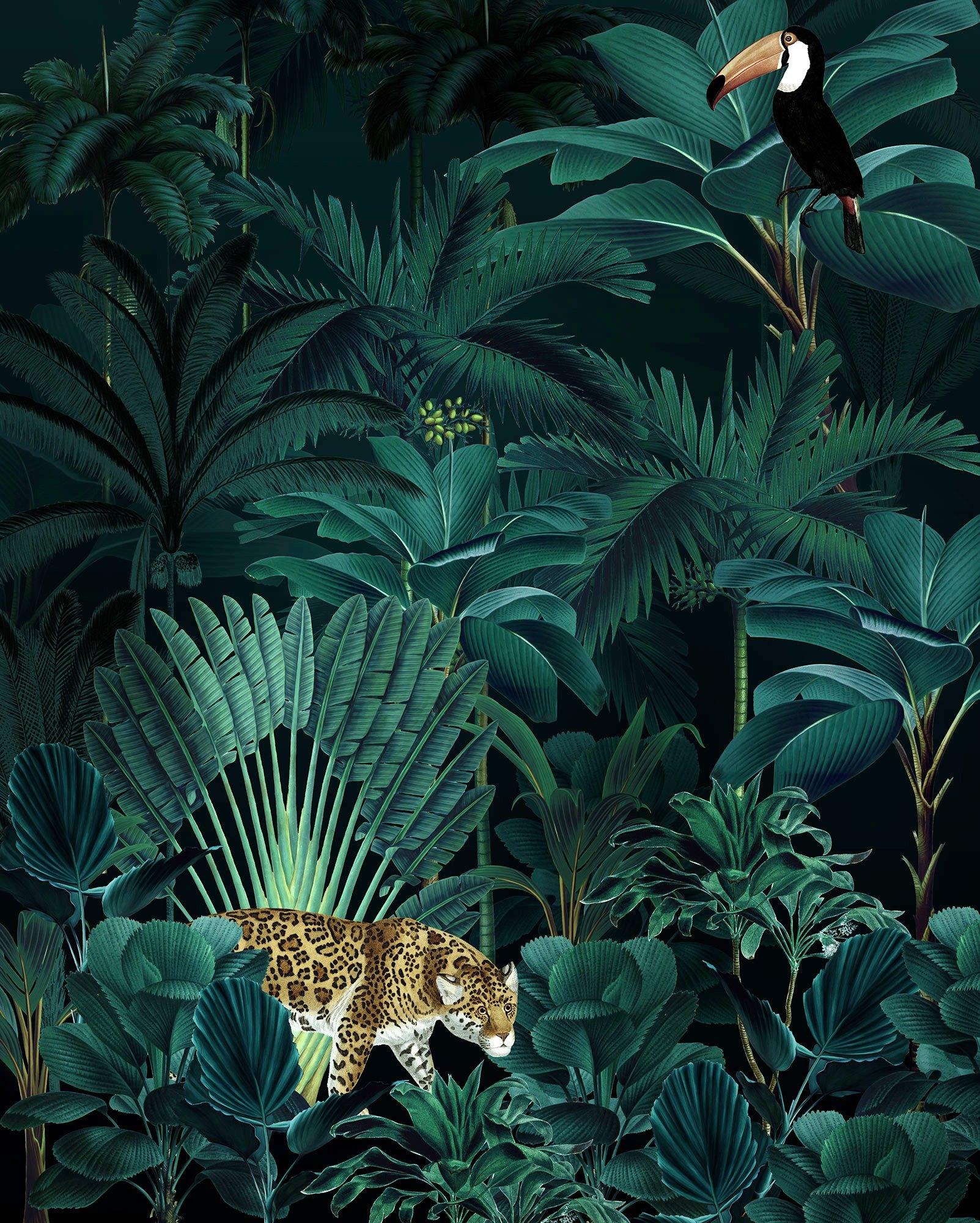 Op zoek naar een Komar fotobehang »Jungle Night«? Koop online bij OTTO