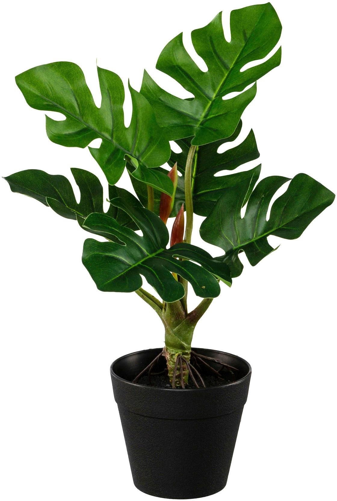 Creativ Green kunst-potplanten »Set aus Grünpflanzen« bestellen: 30 dagen bedenktijd
