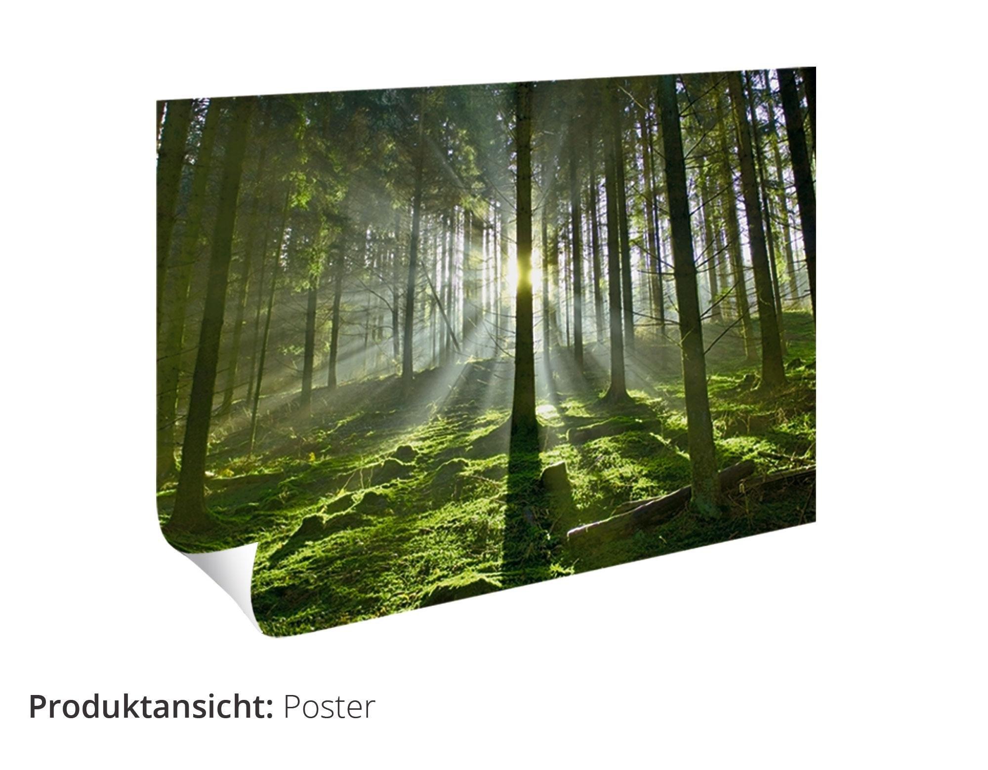 Artland artprint »Fantasie« goedkoop op otto.nl kopen