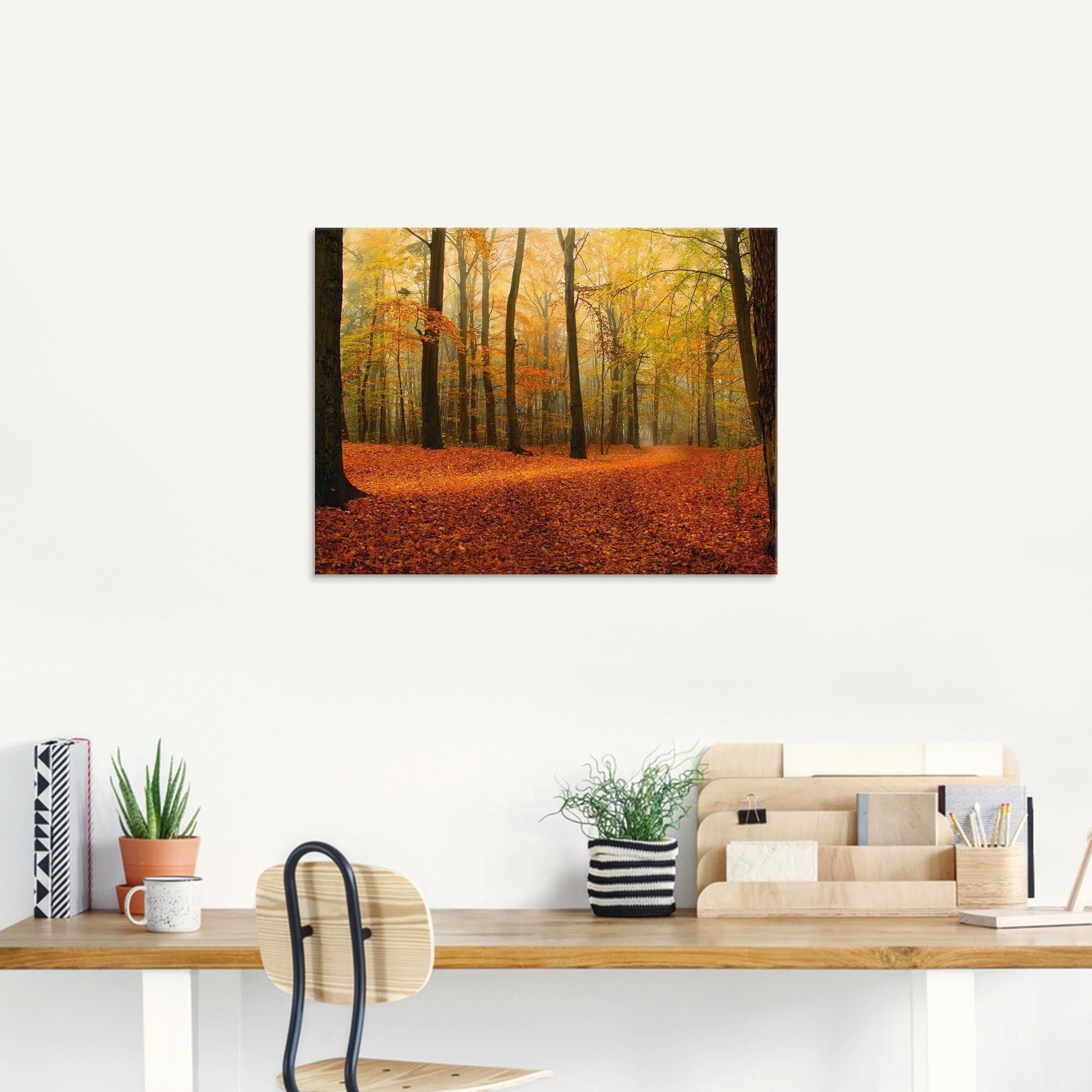 Op zoek naar een Artland print op glas »Herbstwald«? Koop online bij OTTO