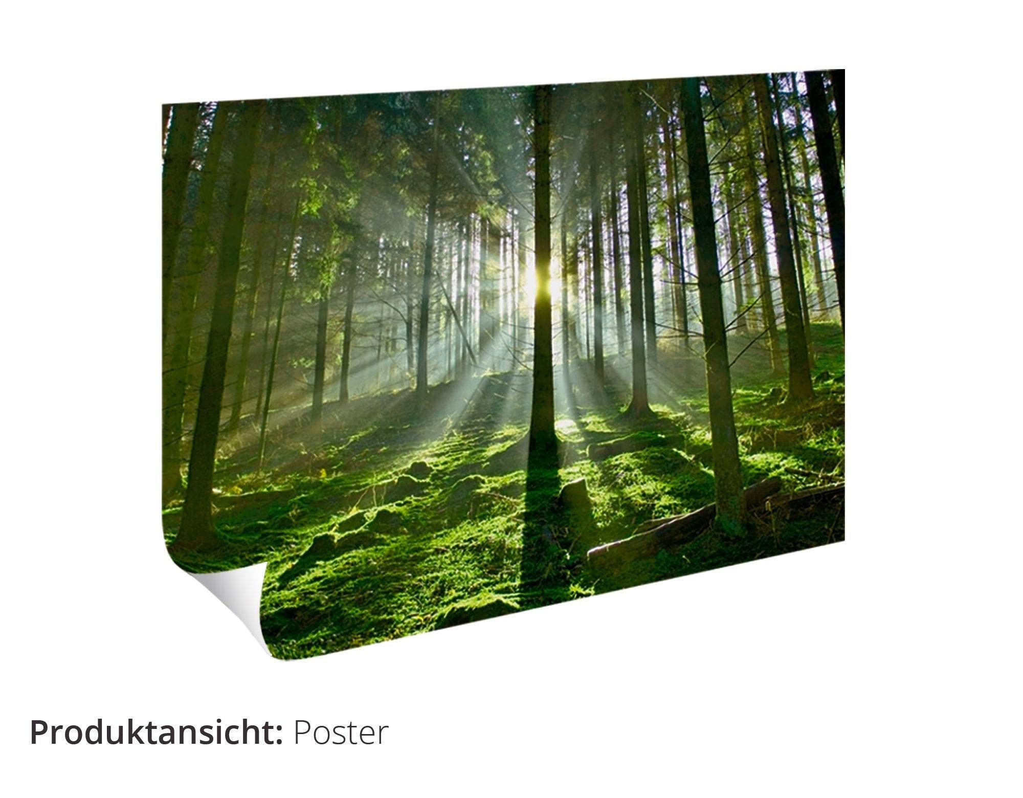 Artland artprint »Fotocollage von 32 bunten Haustüren« nu online kopen bij OTTO