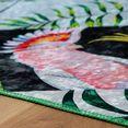 obsession vloerkleed exotic 12m korte pool, modern design, woonkamer multicolor