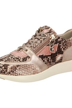 sioux sneakers »malosika-701« multicolor