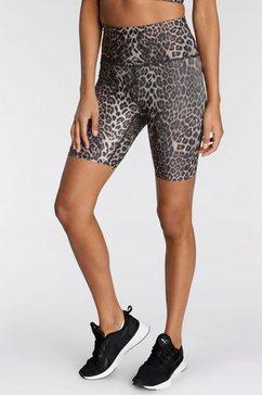 endurance athlecia functionele short windia w printed short tights bruin