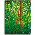 artland artprint bamboe iv in vele afmetingen  productsoorten -artprint op linnen, poster, muursticker - wandfolie ook geschikt voor de badkamer (1 stuk) groen