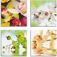artland artprint op linnen orchideen bloemen (4 stuks) multicolor