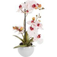 delavita kunstorchidee »ernestine« roze