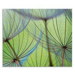 artland keukenwand pusteblumen-samen ii (1-delig) groen