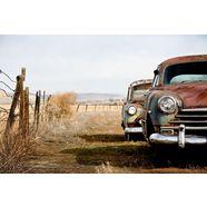 bmd fotobehang »vintage rusting cars« multicolor
