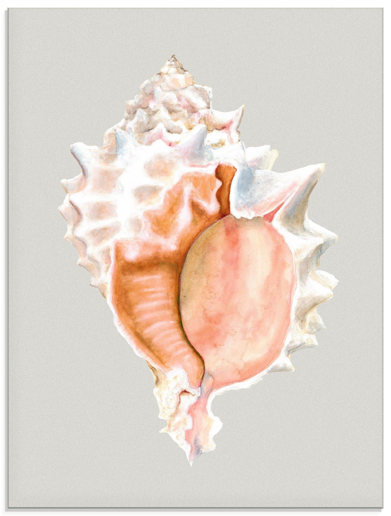 Artland print op glas Pinkkleurige schelp (1 stuk) bestellen: 30 dagen bedenktijd