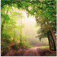 artland print op glas natuurlijke bogen door bomen (1 stuk) groen
