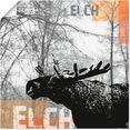 artland artprint »elch« grijs