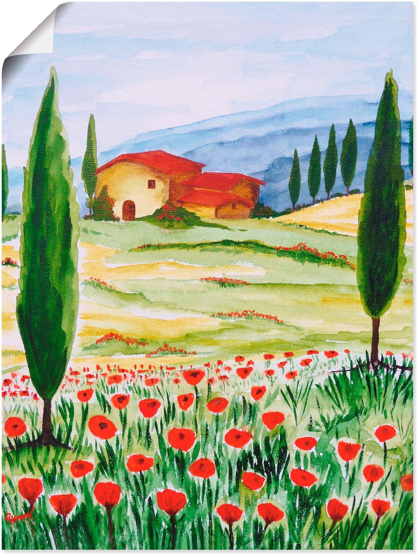 Artland artprint Bloeiende papaver in Toscane in vele afmetingen & productsoorten -artprint op linnen, poster, muursticker / wandfolie ook geschikt voor de badkamer (1 stuk) bij OTTO online kopen