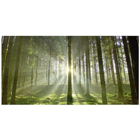 Glazen artprint in 2 afmetingen 'Bos in tegenlicht'