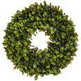 creativ green kunstplant lauwerkrans (1 stuk) groen