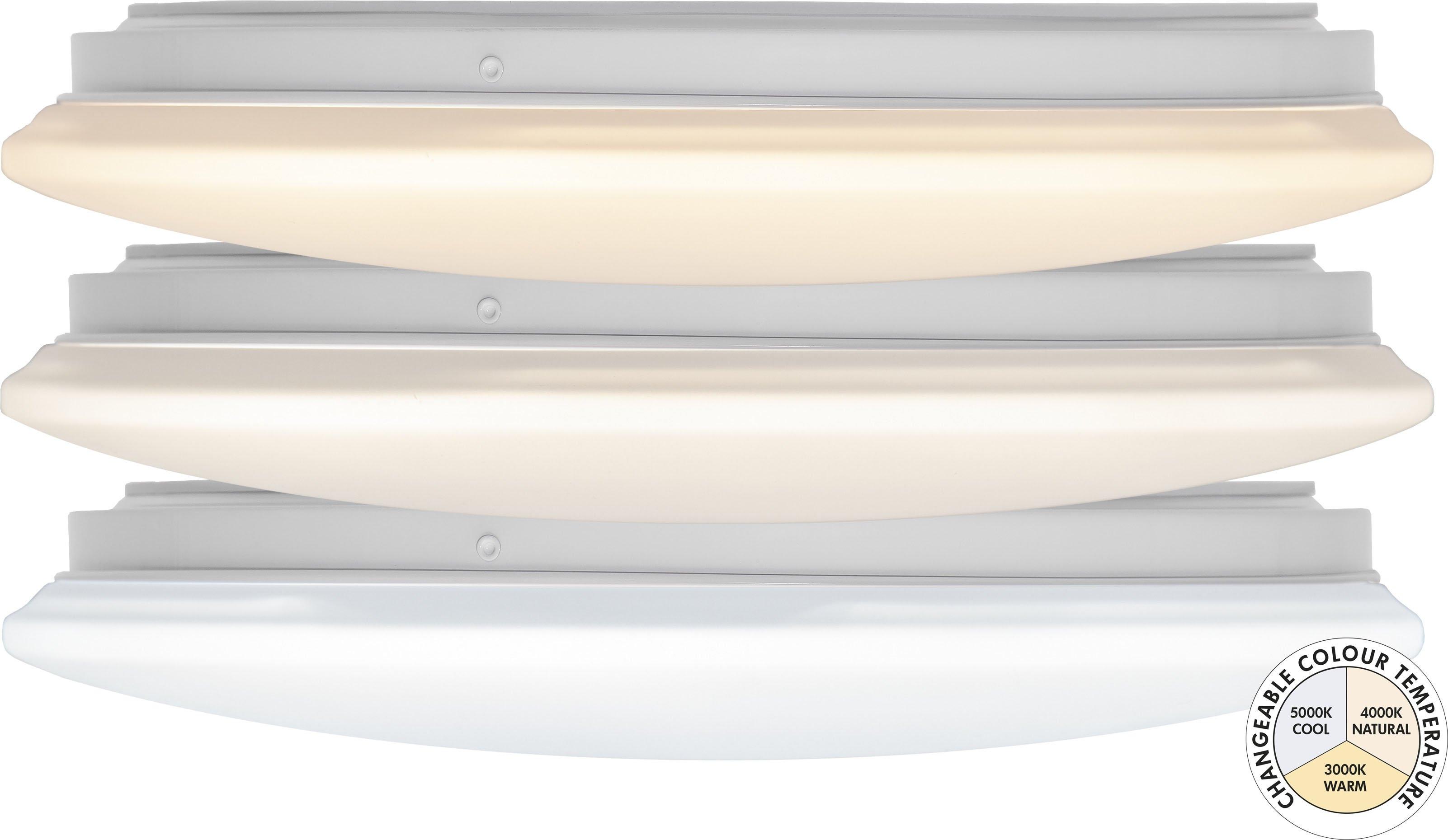 STAR TRADING led-plafondlamp Integra Ceiling in de webshop van OTTO kopen