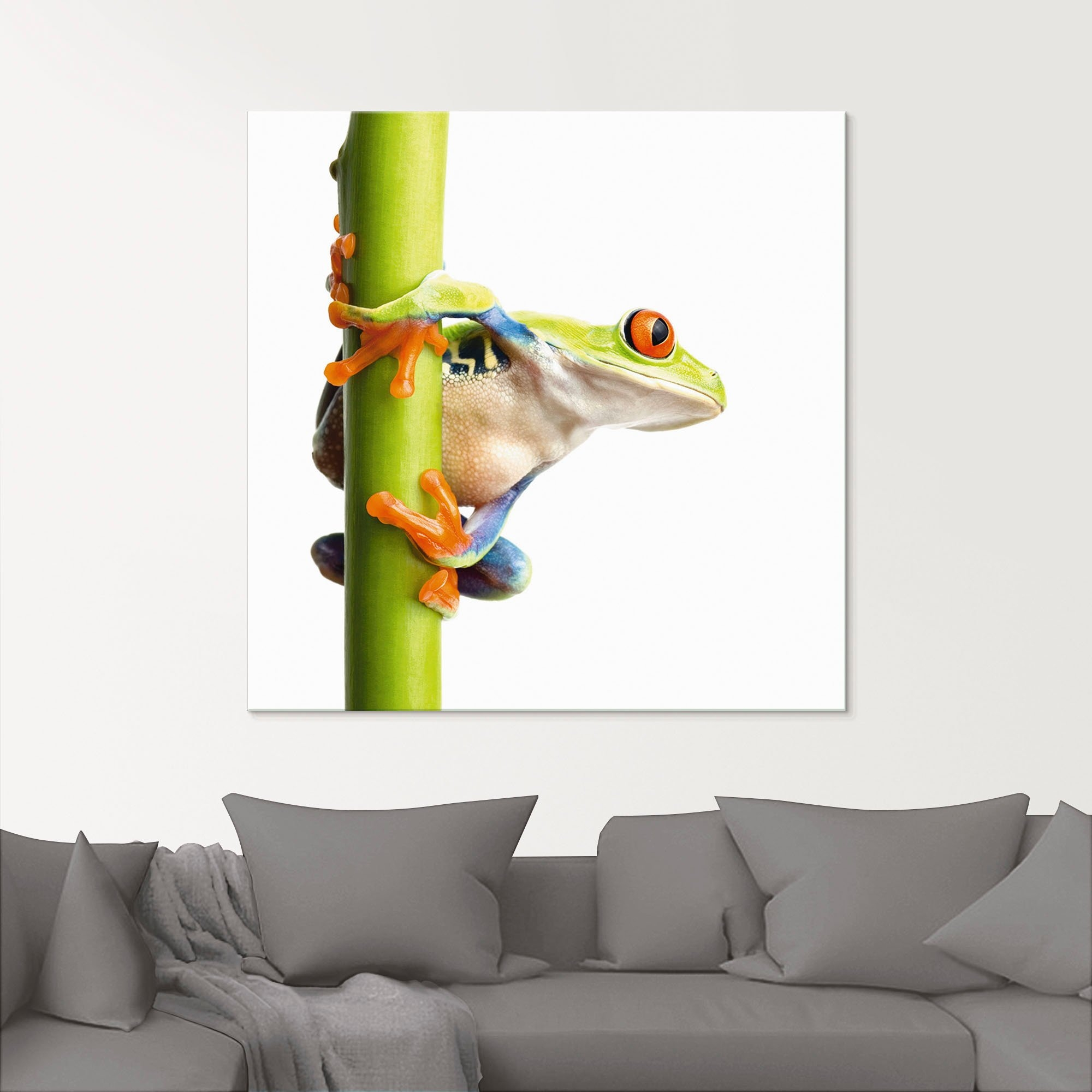 Artland print op glas »Frosch umfasst einen Pflanzenstengel« online kopen op otto.nl