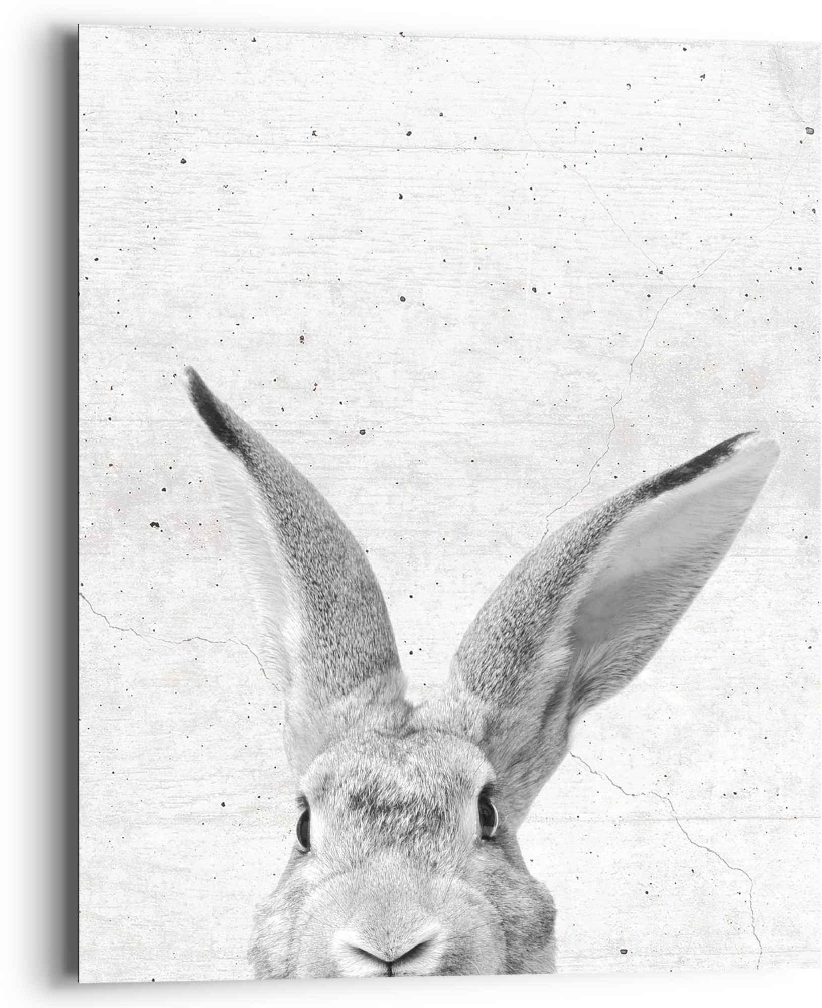 Reinders! artprint konijn bekijkt je diermotief - haas - schattig (1 stuk) goedkoop op otto.nl kopen