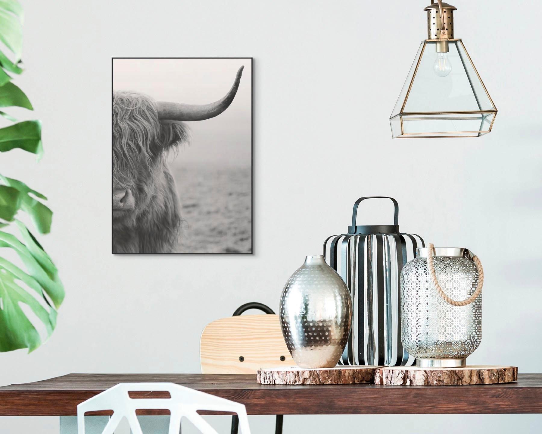 Reinders! artprint Slim Frame Black 50x70 Highlander - verschillende betaalmethodes