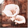 artland artprint klassieke callas in vele afmetingen  productsoorten -artprint op linnen, poster, muursticker - wandfolie ook geschikt voor de badkamer (1 stuk) bruin