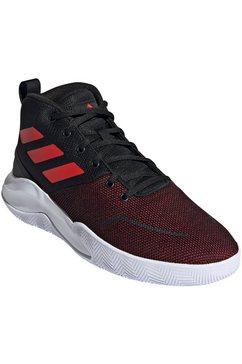 adidas performance basketbalschoenen »ownthegame« zwart