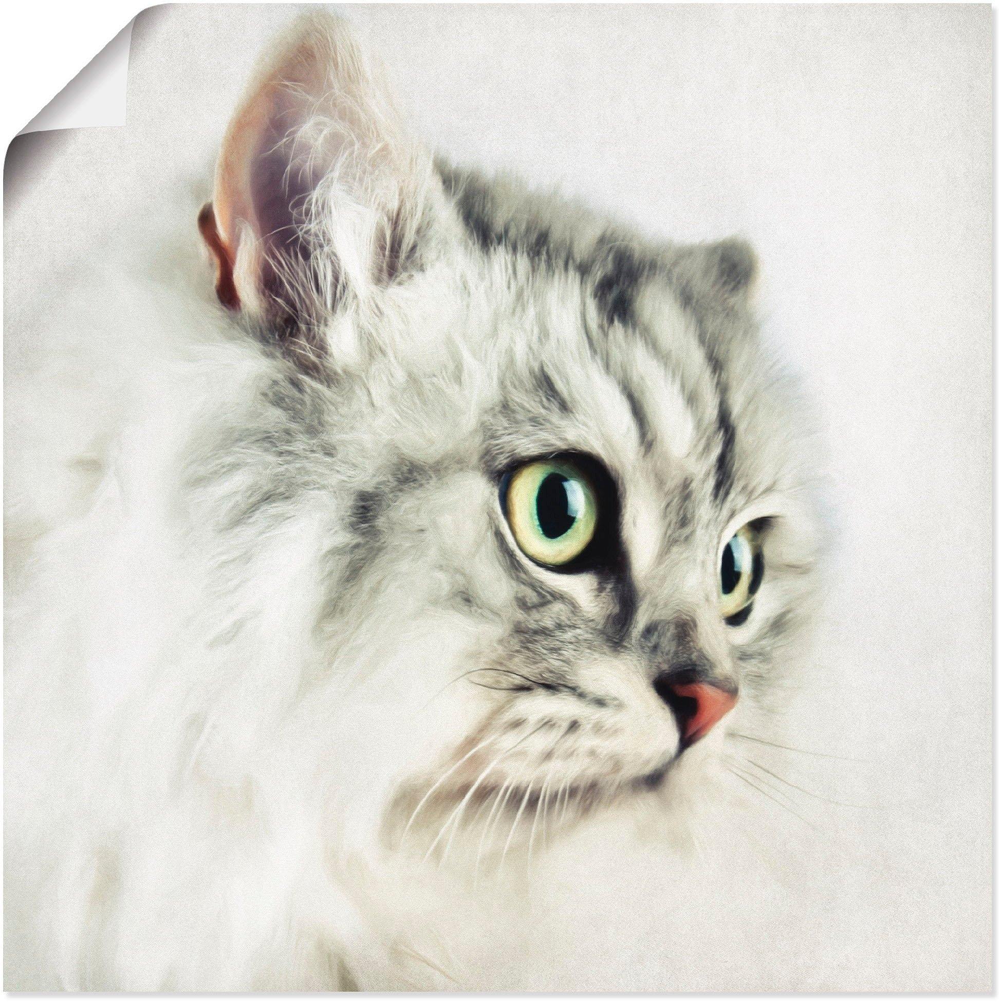 Artland artprint Kattenportret in vele afmetingen & productsoorten - artprint van aluminium / artprint voor buiten, artprint op linnen, poster, muursticker / wandfolie ook geschikt voor de badkamer (1 stuk) - gratis ruilen op otto.nl