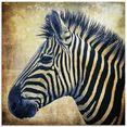 artland print op glas zebra portret popart (1 stuk) bruin