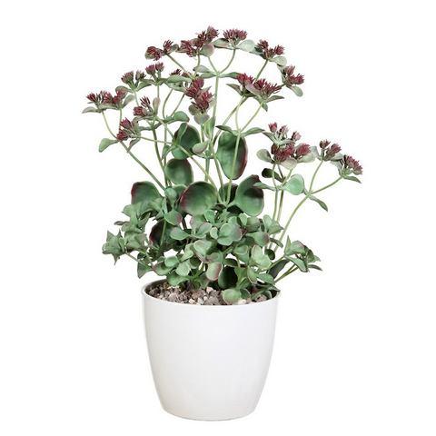 Kunstplant cactus met keramieken pot