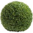 botanic-haus kunstboom buxusbol (1 stuk) groen