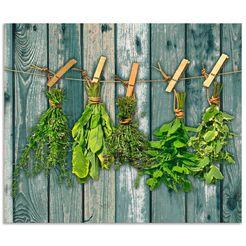 artland keukenwand kraeuter mit holzoptik (1-delig) groen