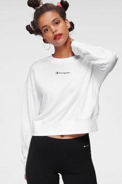 champion sweatshirt wit