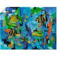 artland artprint »abstrakt fische blau« geel