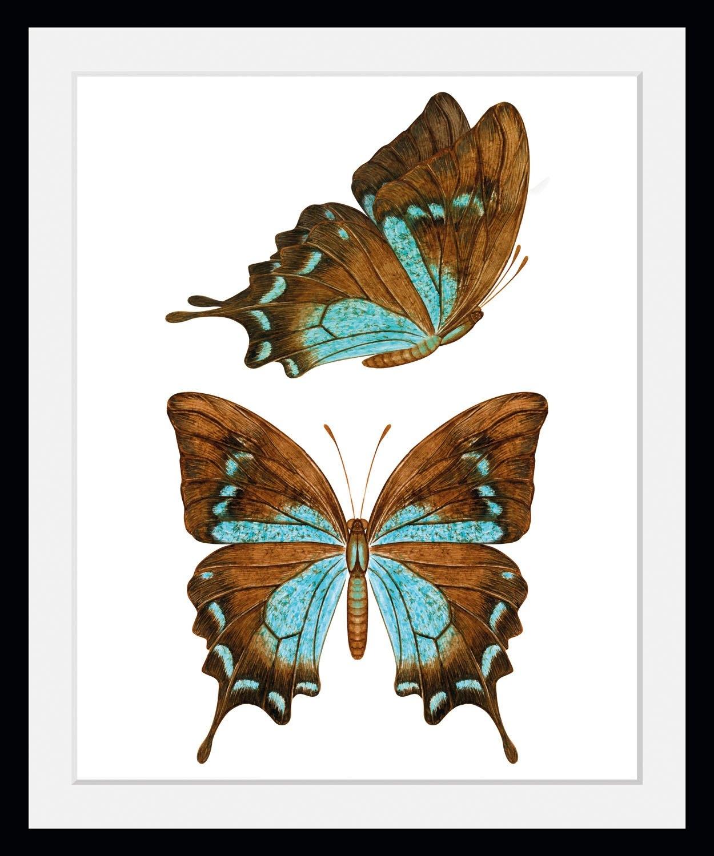 queence wanddecoratie NALA (1 stuk) nu online bestellen