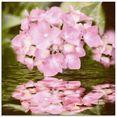 artland print op glas hortensia (1 stuk) roze