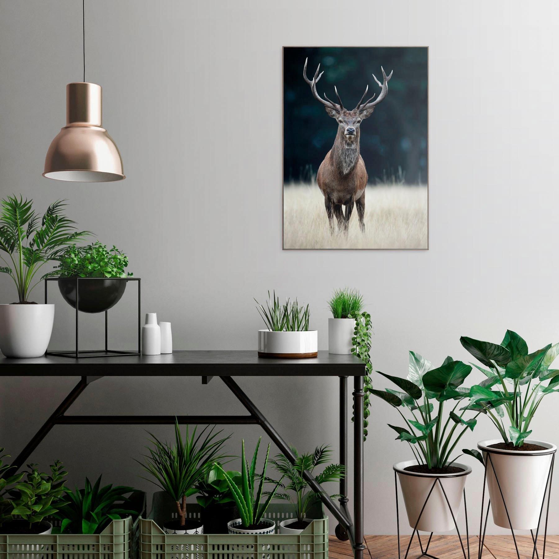 Reinders! artprint Slim Frame Wood 50x70 Deer voordelig en veilig online kopen