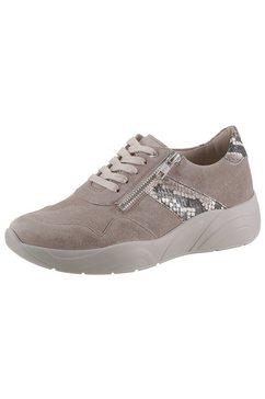 solidus sneakers »hills« bruin