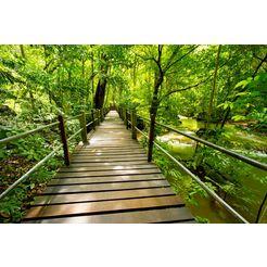 bmd fotobehang »bridge walk« multicolor