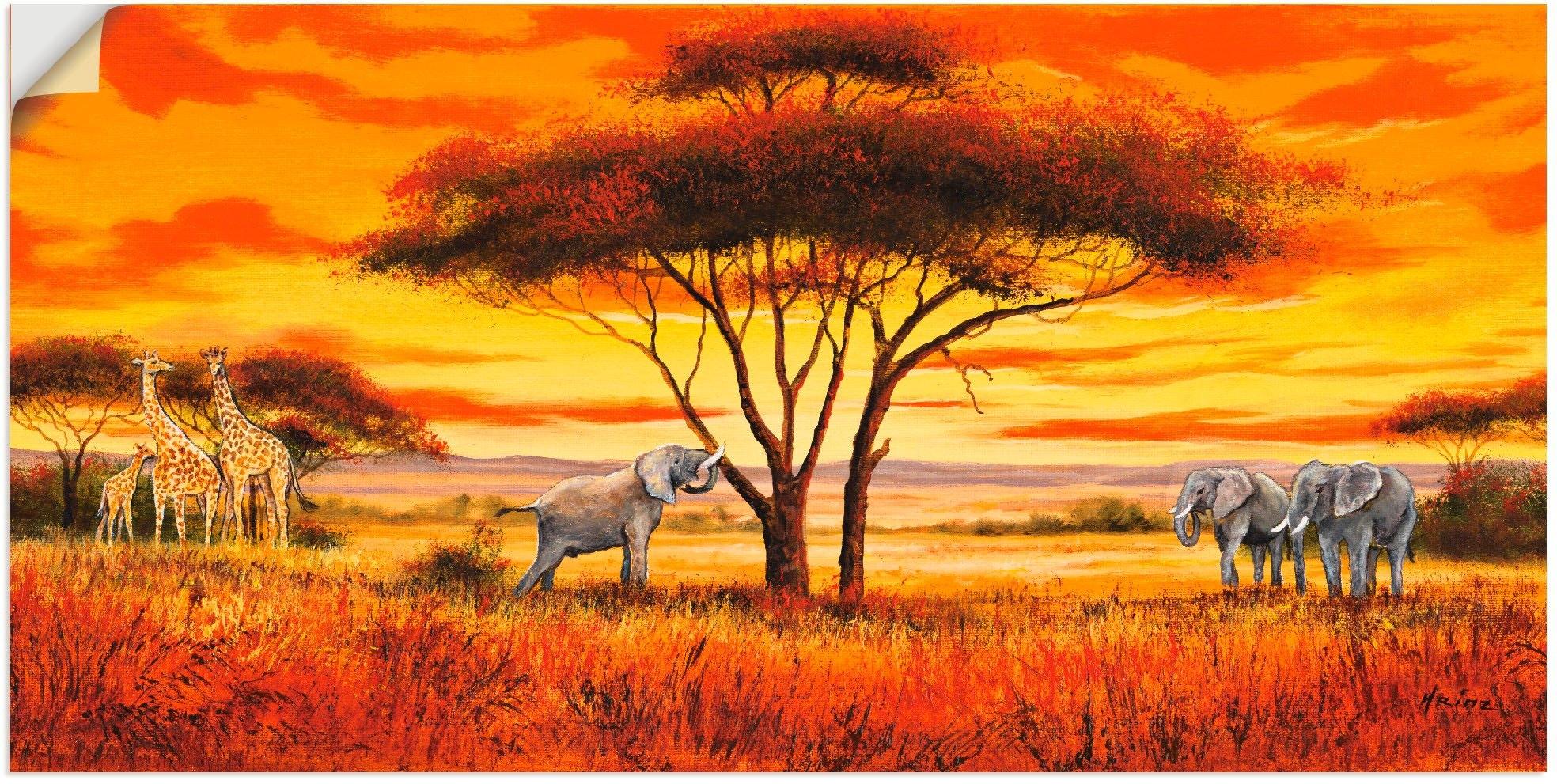 Artland Artprint Afrikaans landschap II in vele afmetingen & productsoorten - artprint van aluminium / artprint voor buiten, artprint op linnen, poster, muursticker / wandfolie ook geschikt voor de badkamer (1 stuk) in de webshop van OTTO kopen