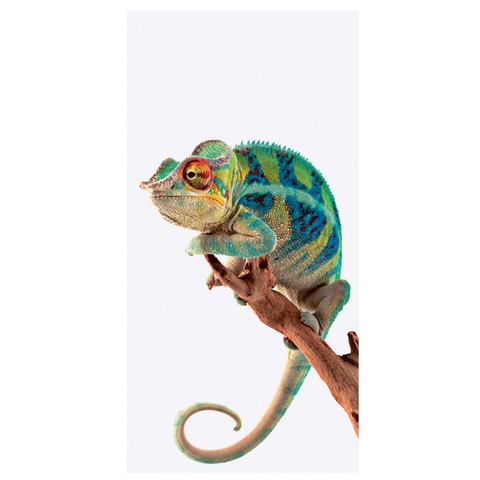 Glazen artprint Ambanja Panther Chameleon